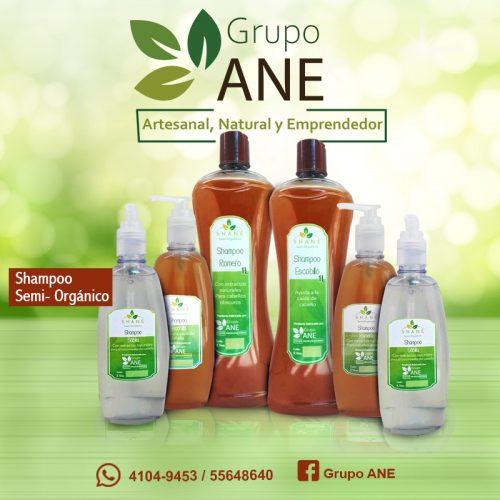 Shampoo semi orgánico ANE